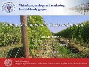 CanopyManagement