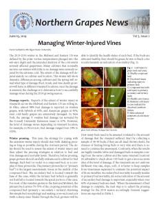 2014JuneNGPnewsletterPage1
